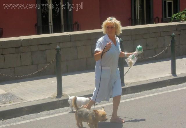 Napoli colf lavoro grembiule 7