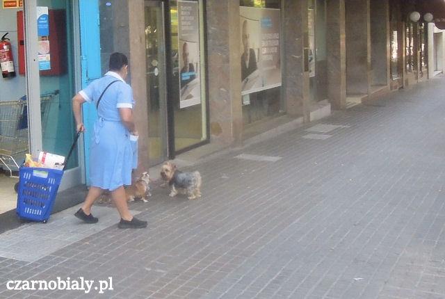 barcelona_10b_cbplm